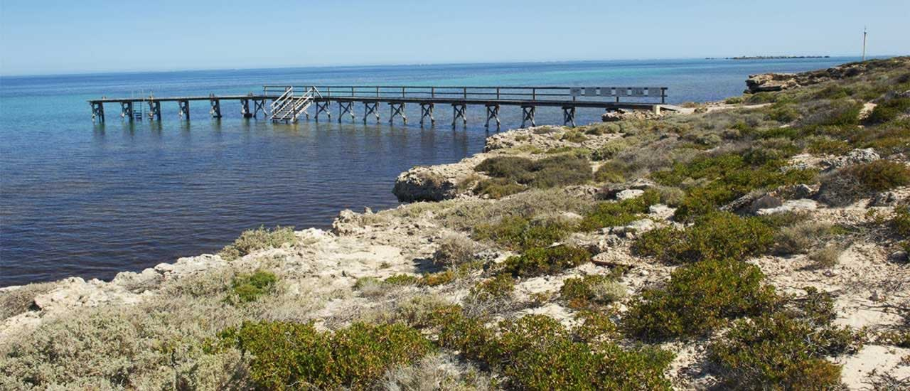 abrolhos islands plane tours